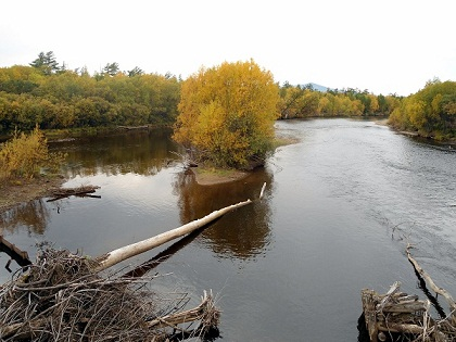места ловли на реке или